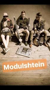 Modulstein